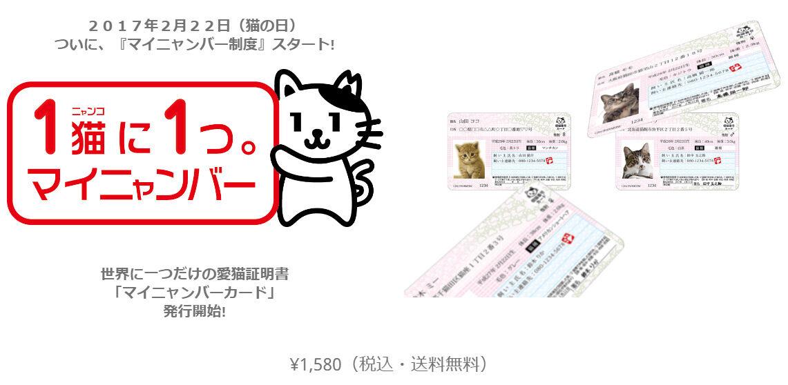 マイナンバーカード 持ってる? 猫の写真で4コマ漫画 5コマ目ッ