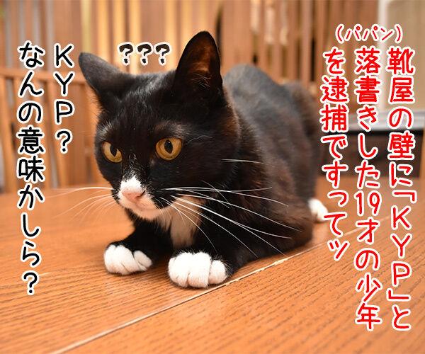 靴店の壁に「KYP」落書き 19歳少年逮捕 猫の写真で4コマ漫画 1コマ目ッ