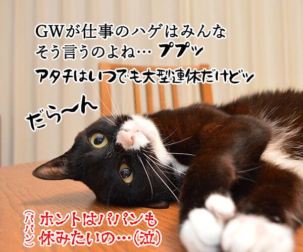 ゴールデンウイークに休んでもさぁ~ 猫の写真で4コマ漫画 4コマ目ッ