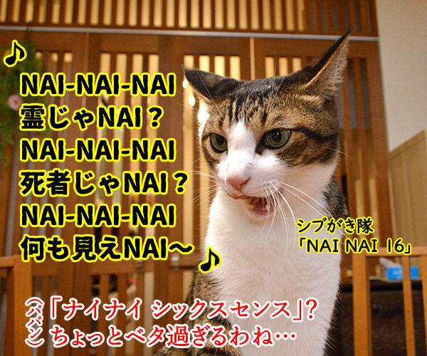 猫さんのシックスセンス 猫の写真で4コマ漫画 3コマ目ッ