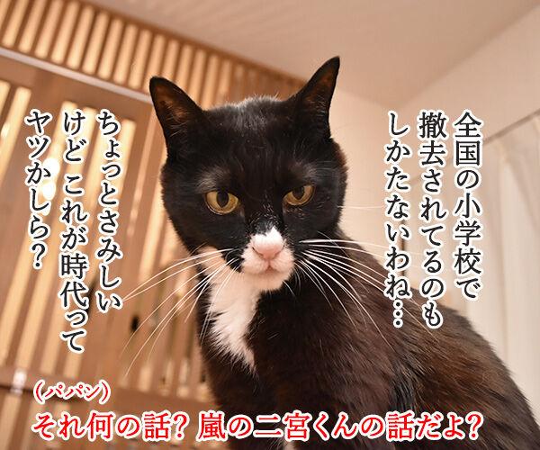 嵐の二宮くんが結婚して「ニノロス」なのッ 猫の写真で4コマ漫画 3コマ目ッ