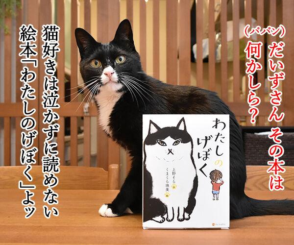 『わたしのげぼく』のスピンオフ作品を考えてみたのッ 猫の写真で4コマ漫画 1コマ目ッ