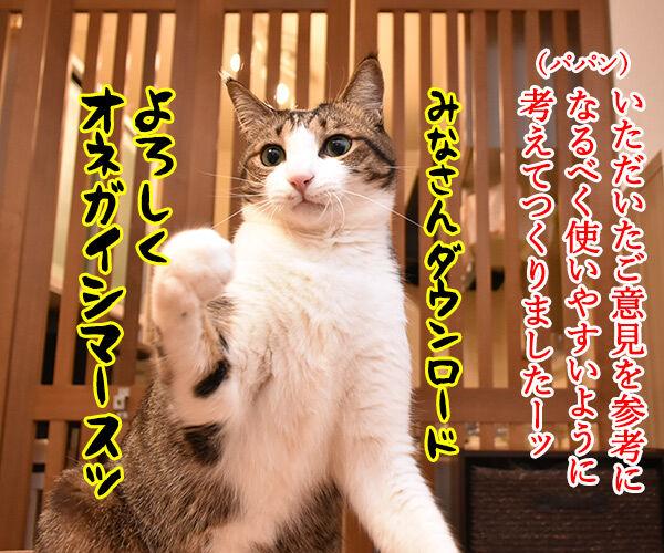 LINEスタンプの第二弾が販売されたのよッ 猫の写真で4コマ漫画 2コマ目ッ