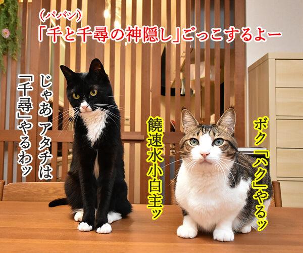 『千と千尋の神隠し』ごっこするよーッ 猫の写真で4コマ漫画 1コマ目ッ