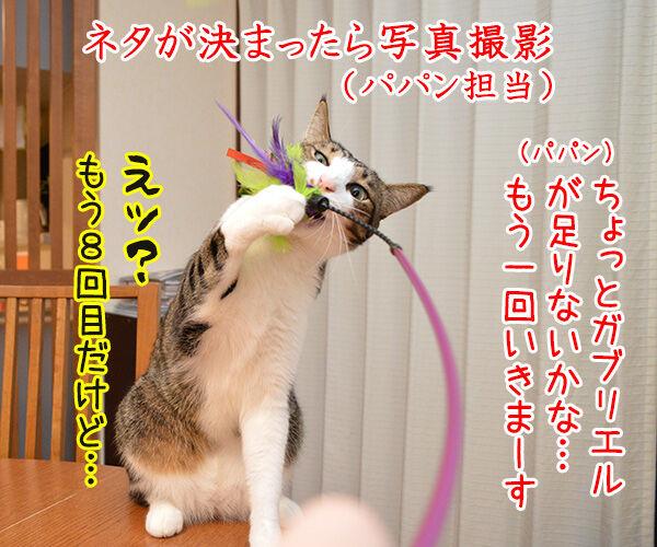 4コマのつくりかた 猫の写真で4コマ漫画 2コマ目ッ