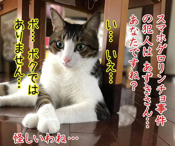 金田一パパンの事件簿 ~スマホゲロリンチョ事件~ 猫の写真で4コマ漫画 2コマ目ッ