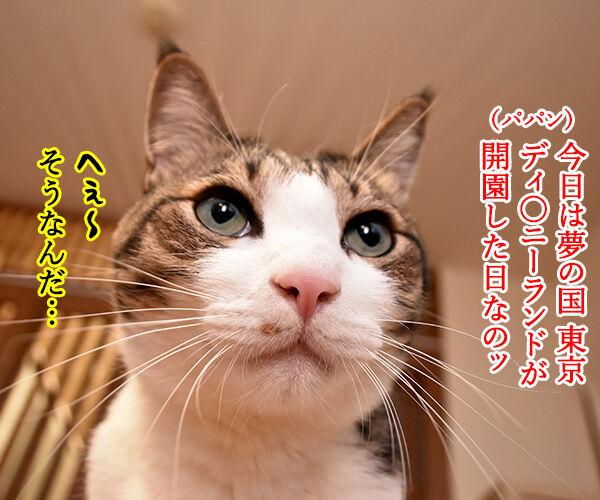 今日は東京ディ〇ニーランドが開園した日なんですってッ 猫の写真で4コマ漫画 1コマ目ッ