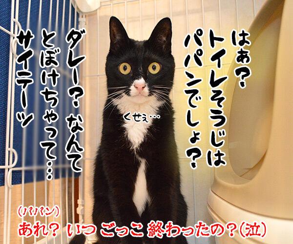 小学校の帰りの会ごっこをするわよーッ 猫の写真で4コマ漫画 4コマ目ッ