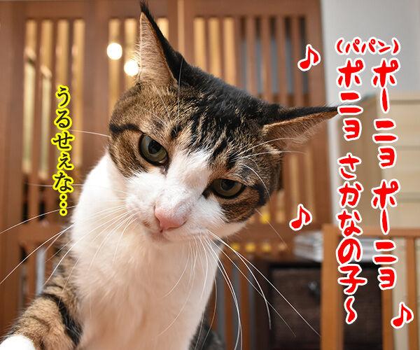 パパン 崖の上のポニョ 唄いますッ 猫の写真で4コマ漫画 1コマ目ッ