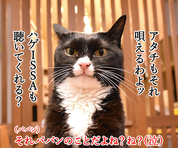DA PUMPのU.S.Aはダサかっこいいのよッ 猫の写真で4コマ漫画 3コマ目ッ