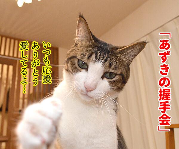 あずきさんの握手会 猫の写真で4コマ漫画 1コマ目ッ