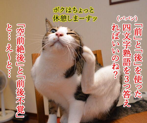 夏休みの宿題が終わらないの… 猫の写真で4コマ漫画 2コマ目ッ