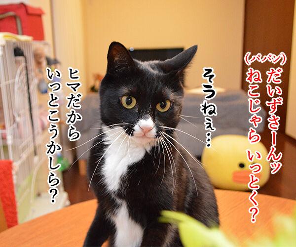 ねこじゃら、いっとく? 猫の写真で4コマ漫画 1コマ目ッ