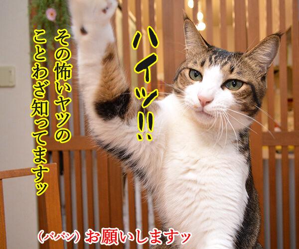 地震 雷 火事 親父 猫の写真で4コマ漫画 3コマ目ッ