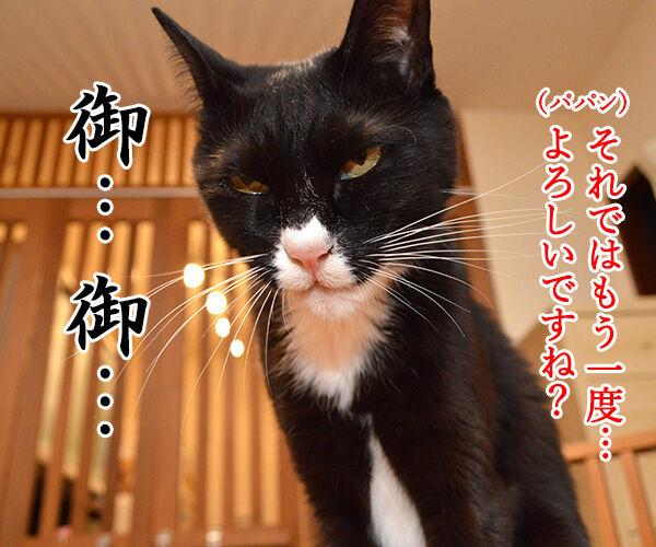 ドクターXごっこ「御意ッ」 猫の写真で4コマ漫画 3コマ目ッ