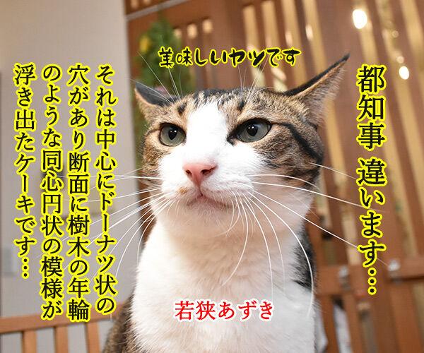 アウフヘーベン 意味は辞書で調べるのよッ 猫の写真で4コマ漫画 2コマ目ッ