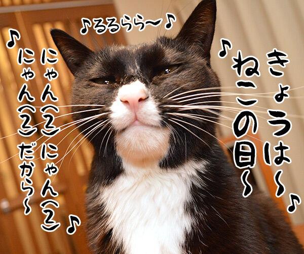 にゃんにゃんにゃんは猫の日なの 猫の写真で4コマ漫画 1コマ目ッ