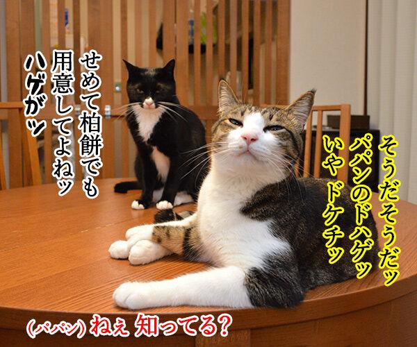 こどもの日 猫の写真で4コマ漫画 3コマ目ッ