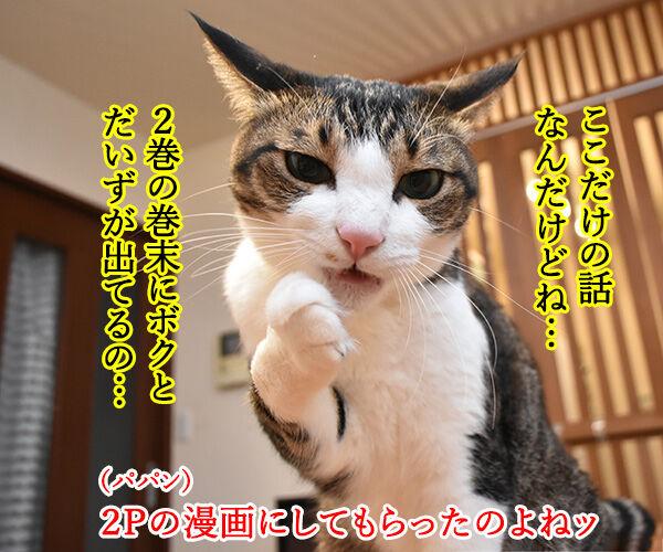 『うちの犬が子ネコ拾いました。』第2巻は6月26日発売なのよッ 猫の写真で4コマ漫画 2コマ目ッ