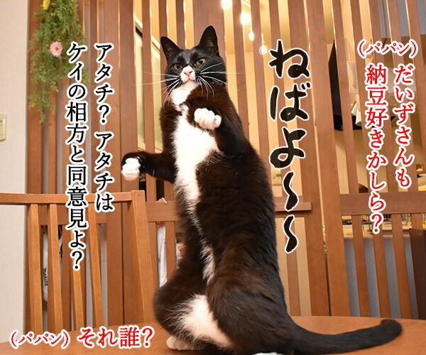 7月10日は『納豆』の日なんですってッ 猫の写真で4コマ漫画 3コマ目ッ