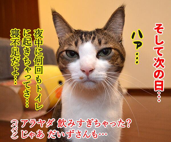 お水を飲みすぎちゃうと… 猫の写真で4コマ漫画 3コマ目ッ