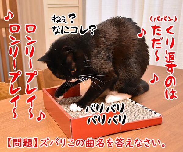 ピアノに問いかけてみて? 猫の写真で4コマ漫画 4コマ目ッ