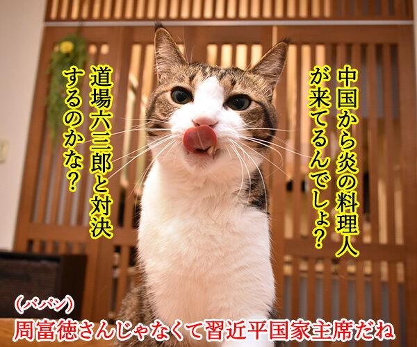 大阪で何やら開催してるらしいのよッ 猫の写真で4コマ漫画 2コマ目ッ