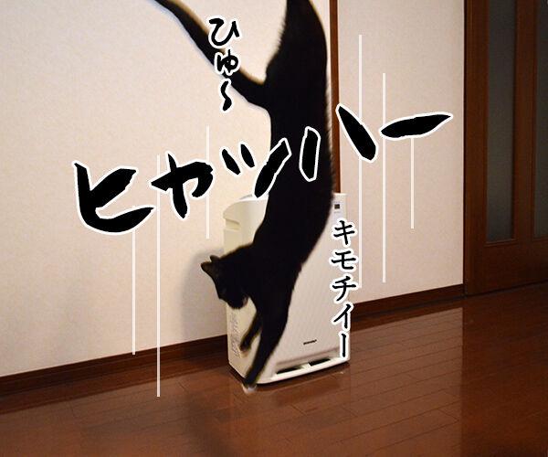 海外旅行でバンジージャンプ 猫の写真で4コマ漫画 3コマ目ッ