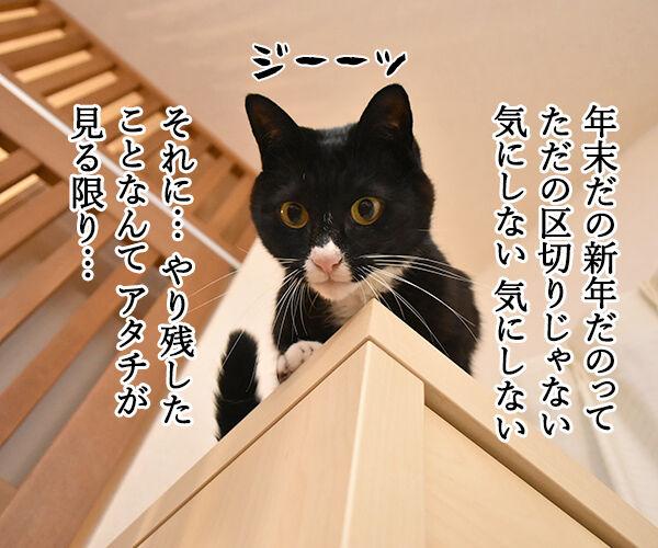 今年やり残したコト 猫の写真で4コマ漫画 3コマ目ッ