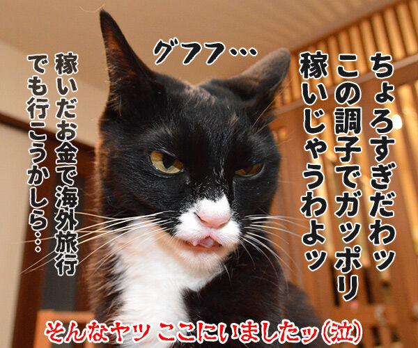 熊本地震 気を付けなくちゃいけないコト 猫の写真で4コマ漫画 4コマ目ッ