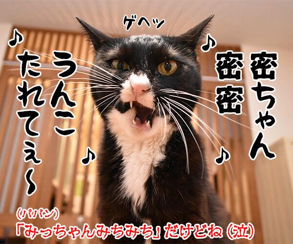 ウンチョスは自粛しなくちゃなのッ 猫の写真で4コマ漫画 4コマ目ッ