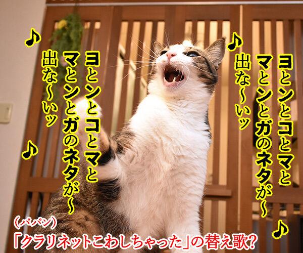 4コマのネタが思いつかない時は唄うのよッ 猫の写真で4コマ漫画 2コマ目ッ