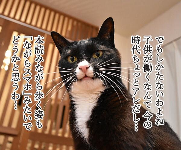 嵐の二宮くんが結婚して「ニノロス」なのッ 猫の写真で4コマ漫画 2コマ目ッ