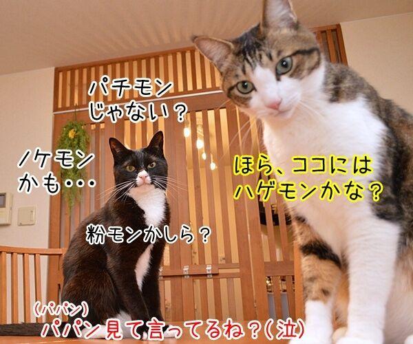 猫さんにはポケモンが見えるんですってッ 猫の写真で4コマ漫画 2コマ目ッ