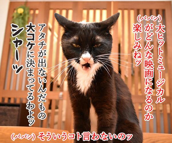 大ヒットミュージカル「キャッツ」が実写映画化なのよッ 猫の写真で4コマ漫画 2コマ目ッ