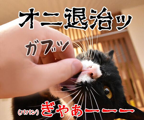 節分はアタチ達 豆兄弟にまかせてちょうだいッ 猫の写真で4コマ漫画 3コマ目ッ