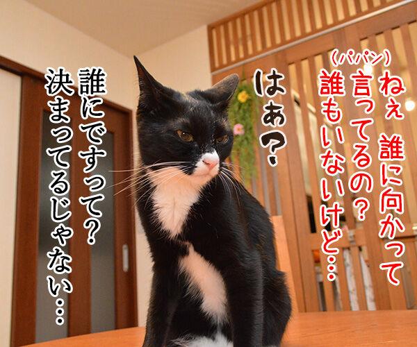 お説教 猫の写真で4コマ漫画 3コマ目ッ
