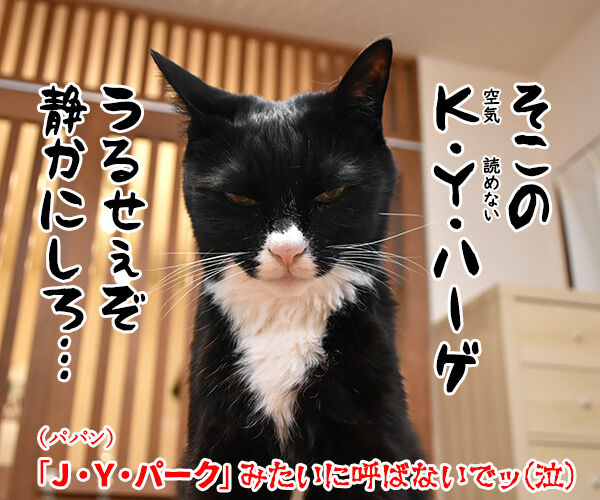 NiziUの『Make you happy』を唄うのよッ 猫の写真で4コマ漫画 4コマ目ッ