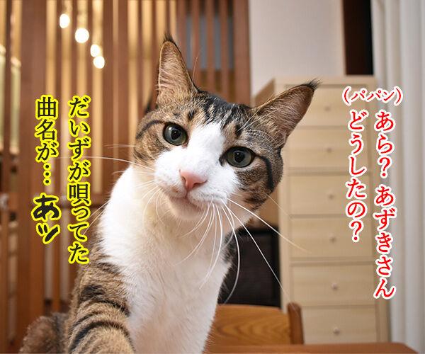 あの曲名が思い出せないのよッ 猫の写真で4コマ漫画 3コマ目ッ