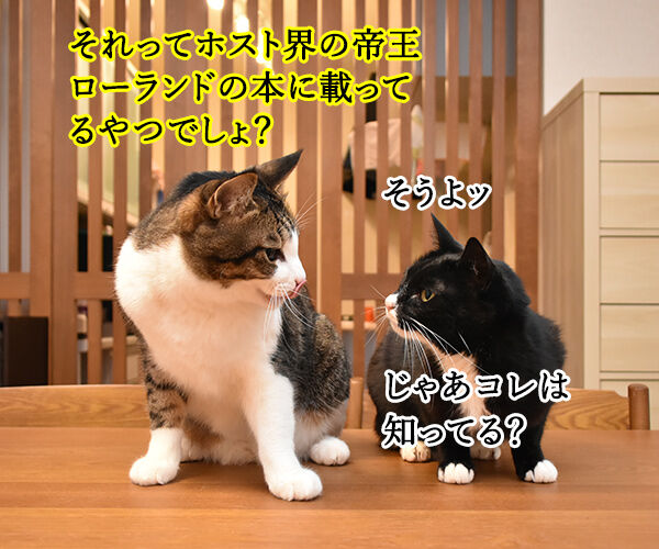 親からもらった大事な… 猫の写真で4コマ漫画 3コマ目ッ