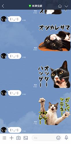 あずだいのLINEスタンプ 第二弾 猫の写真で4コマ漫画 5コマ目ッ