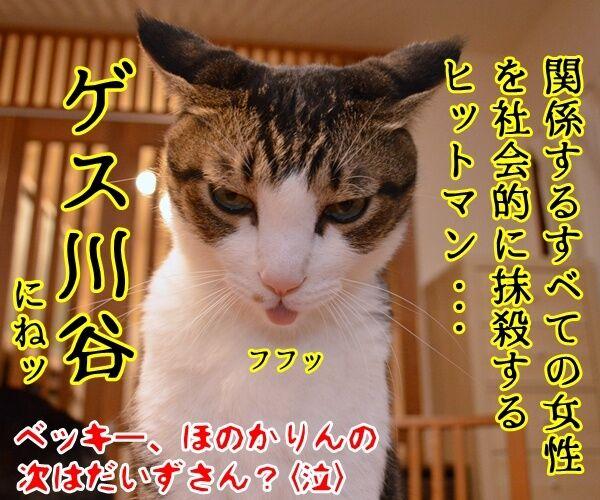 だいず女王様をなんとかしてよッ 猫の写真で4コマ漫画 4コマ目ッ