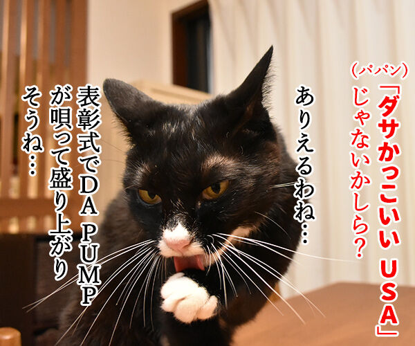 きょうは流行語大賞の発表日なのッ 猫の写真で4コマ漫画 2コマ目ッ