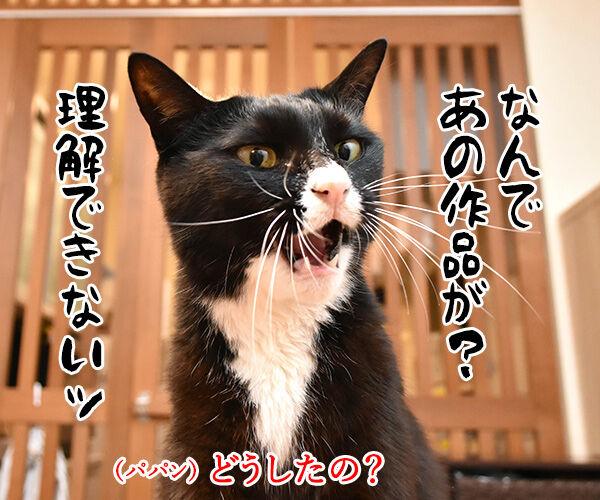 映画『万引き家族』はカンヌでパルムドールなのッ 猫の写真で4コマ漫画 1コマ目ッ