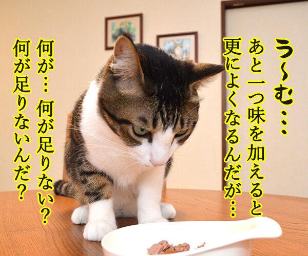 先生、お味はいかがでしょうか? 猫の写真で4コマ漫画 3コマ目ッ