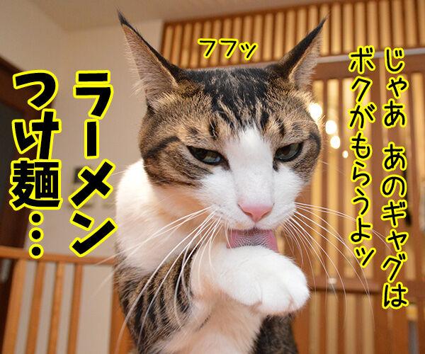 狩野英孝がまたやらかしちゃったね 猫の写真で4コマ漫画 3コマ目ッ