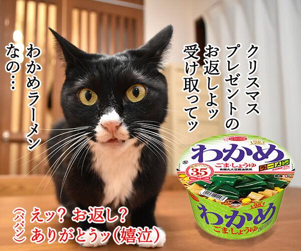 クリスマスプレゼントのお返しは? 猫の写真で4コマ漫画 1コマ目ッ