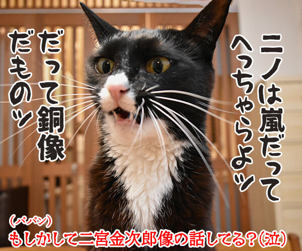 嵐の二宮くんが結婚して「ニノロス」なのッ 猫の写真で4コマ漫画 4コマ目ッ