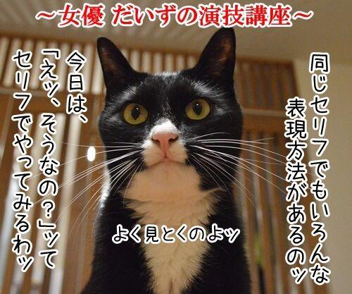 女優だいずの演技講座 猫の写真で4コマ漫画 1コマ目ッ