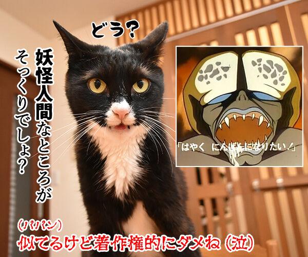 パパンの似顔絵をいただいたのよッ 猫の写真で4コマ漫画 4コマ目ッ